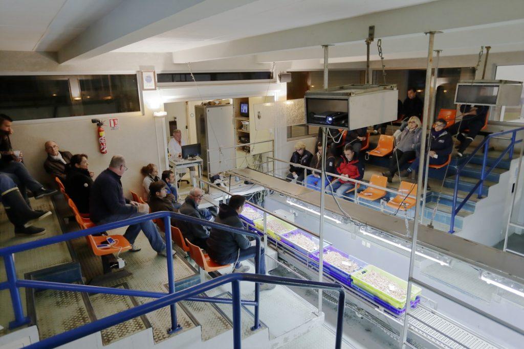 La salle de vente de la halle à marée du Croisic