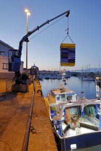 Débarquement de pêche grâce à la grue hydraulique